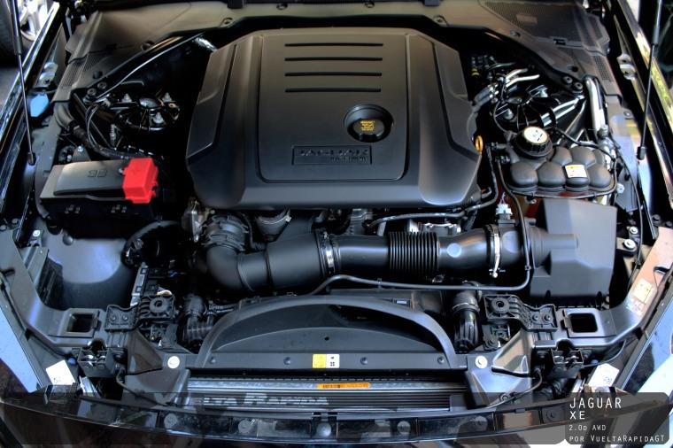 jaguarXE-9 copia