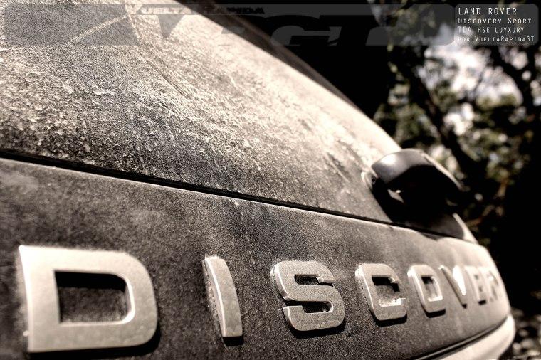 discosport9 copia
